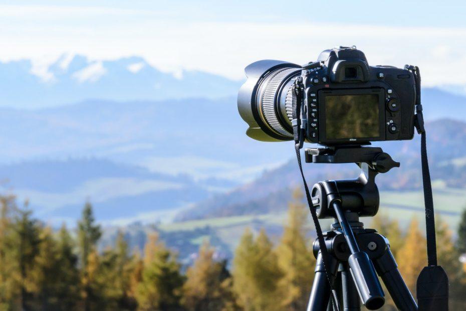 camera wildlife